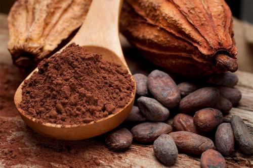 22 цікаві факти про какао
