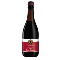 Вино ігристе Botte Buona Vino Lambrusco Emilia Frizzante Amabile червоне напівсолодке 8% 0,75л