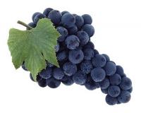 Виноград синій ваг/кг