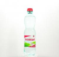 Вода мінеральна Трускавецька с/г 0,5л х12
