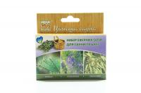 Набір Flora Secret ефірних олій для сауни та бані 3*10мл х6