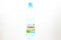 Вода мінеральна Трускавецька н/г 0,5л х12