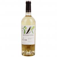 Вино Botalcura Sauvignon біле сухе 0.75л х2