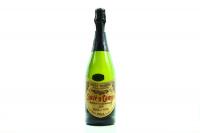 Вино ігристе Juve y Camps брют біле 0.75л х2