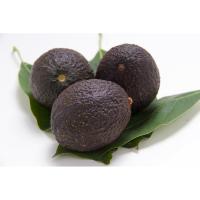 Авокадо червоне Ізраїль10 / шт