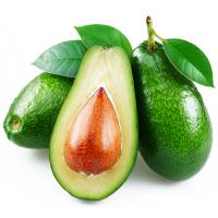 Авокадо ПАР 18