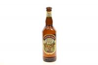Пиво ППБ Андріївський ель світле 0,5л х12