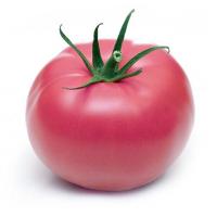 Помідор рожевий ваговий /кг