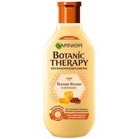 Шампунь Garnier Botanic Therapy Мед та прополіс 250мл