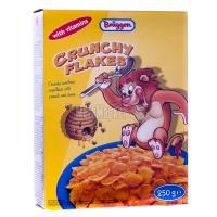 Пластівці Bruggen Crunchy Flakes 250г х18