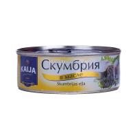 Скумбрія  Kaija в олії 240г х24
