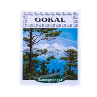 Чай Gokal Канченджунга 100г х60