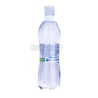 Вода Природне Джерело н/г 0,5л х24