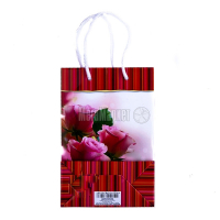 Пакет подарунковий ламінований 14*21см