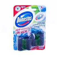 """Чистячі кубики для зливного бачка Domestos """"Зелений лайм"""", 2 шт."""