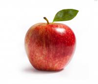 Яблука Чемпіон Україна вагові