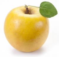Яблука Голден вагові /кг